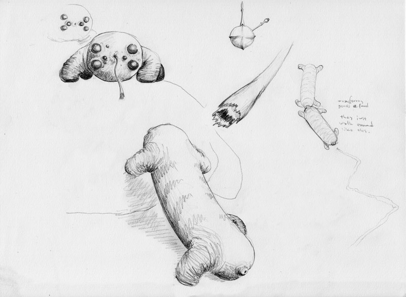 Several views of Polar Piglets