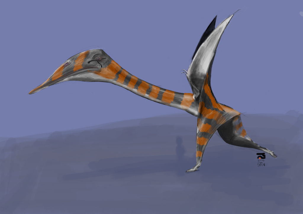The Quetzalcoatlus Northropi  U2013 Xenoglyph