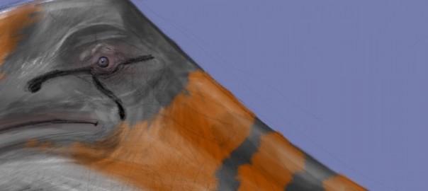 Quetzalcoatlus Eyeball